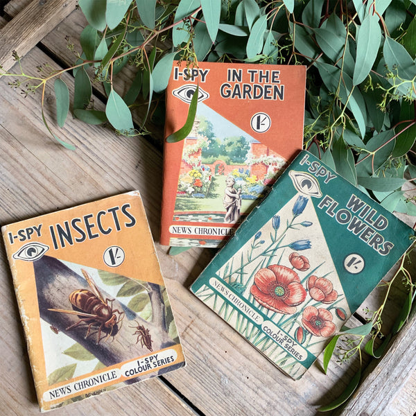 Vintage 1950s I Spy Nature Books