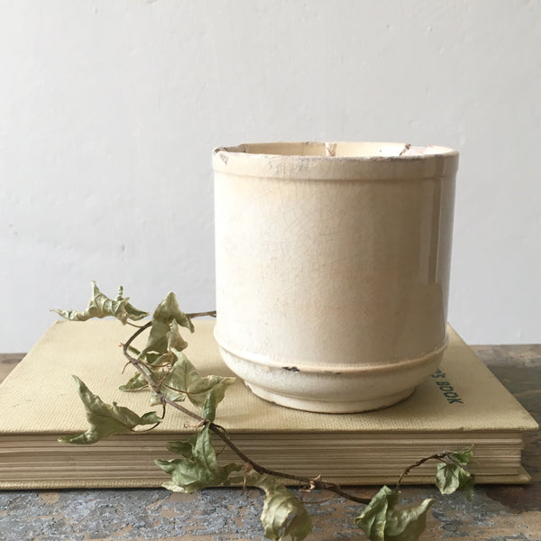 Rustic French Pot Candle in Green Tomato Leaf