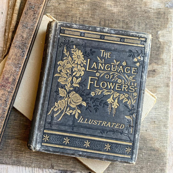 The Language of Flowers Vintage Book