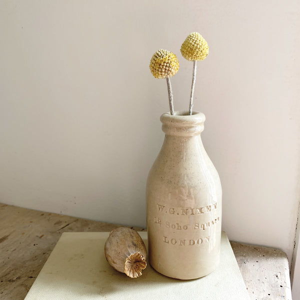 Antique W G Nixey, Soho Square, Stoneware Bottle