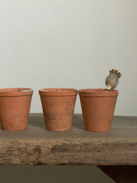 Miniature Terracotta Pots