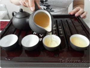 How to Properly Brew Zhen Mei Green Tea