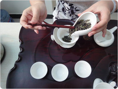 The Guide to Making White Tea – How to Make White Peony Bai Mu Dan Tea