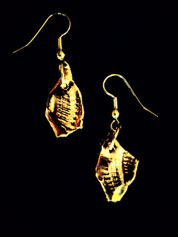 Earrings 22kt yellow gold overlay sea shell