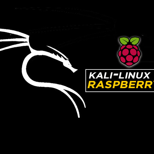 Kali Linux for Raspberry Pi