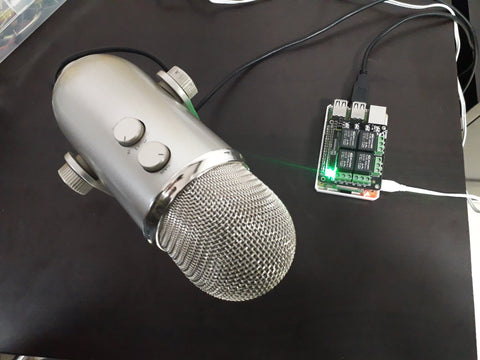 Mic for Raspberry Pi