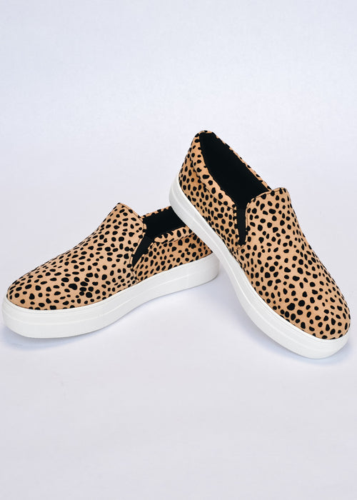 Sole call leopard sneaker stacked on another with white sole - elle bleu
