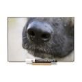 """Dog Black Nose""  PHOTO CHALKBOARD  Includes Chalkboard, Chalk Marker and Stand"
