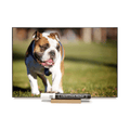 """Bulldog""  PHOTO CHALKBOARDS Includes Chalkboard, Chalk Marker and Stand"