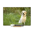 """Yellow Lab""  PHOTO CHALKBOARDS  Includes Chalkboard, Chalk Marker and Stand"