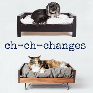 Ch-Ch-Changes! What's the Same & What's Different?