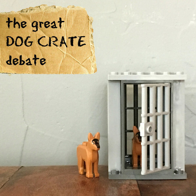 The Great Dog Crate Debate