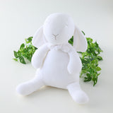 Bunny Soft Toy L