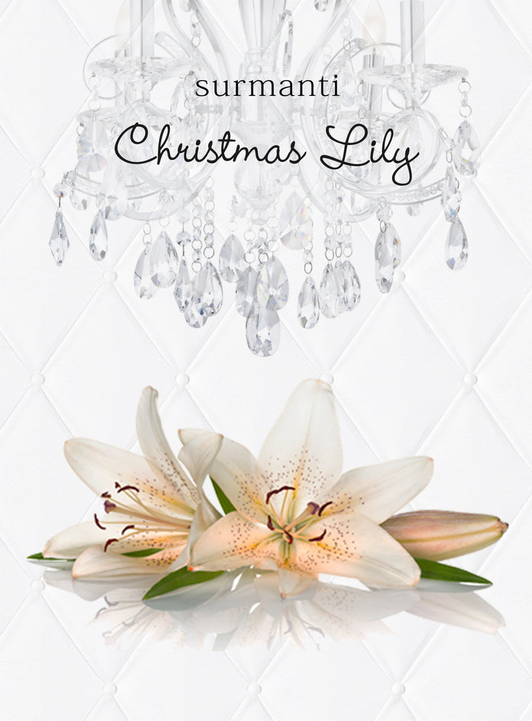 Christmas Lily Reed Diffuser Oil & Luxury Black Reeds