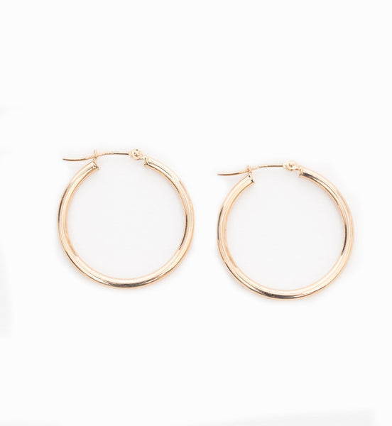 25 mm Hinged Hoop Earrings