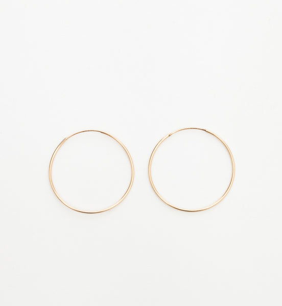 Large Hoop Earrings