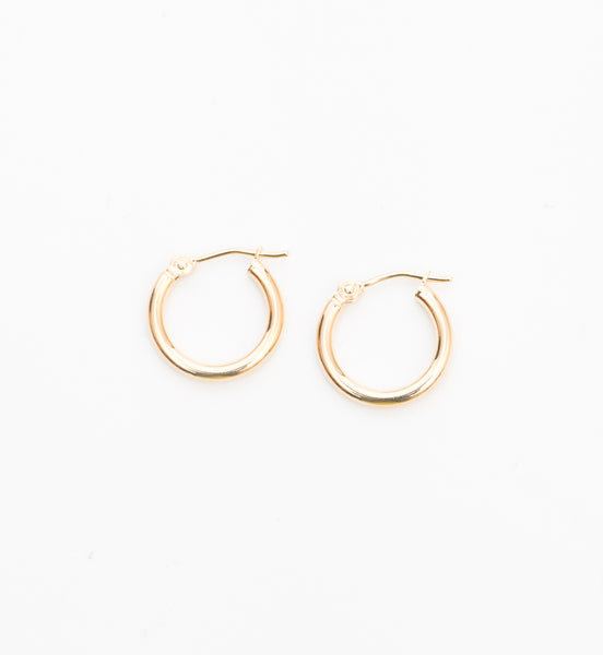 15 mm Hinged Hoop Earrings