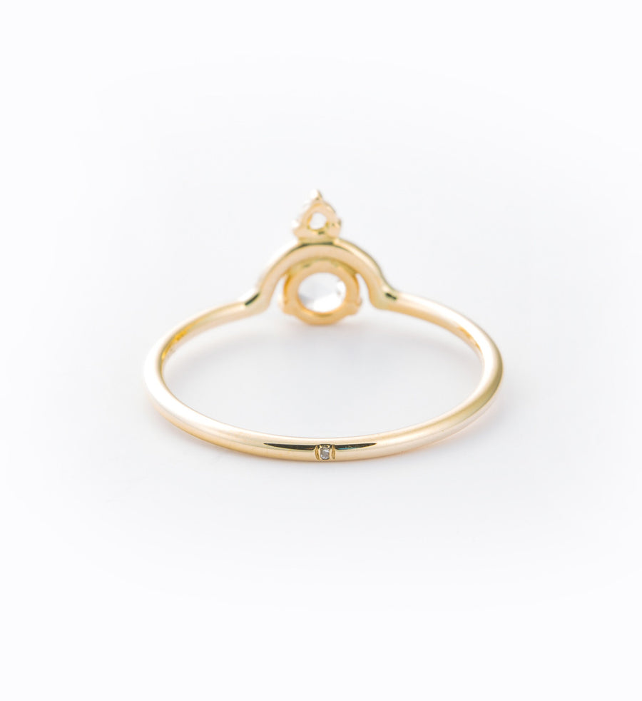 Nestled Rose Cut Diamond Ring: Back