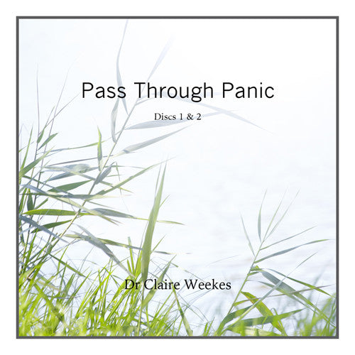 Pass through Panic (2 CD Set)