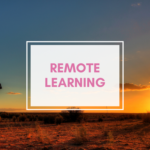 Remote Music Lessons