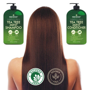 Tea Tree Mint Shampoo and Conditioner - This set contains Pure Tea Tree Oil & Peppermint Oil - Fights Hair Loss, Promotes Hair Growth, Fights Dandruff, Lice and Itchy Scalp - for Men and Women Sulfate Free - 16 fl oz x 2