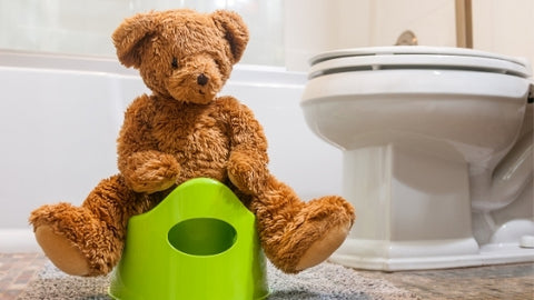 Potty Training Kids Young Moms Blog