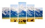 HD Printed Wyoming Grand Teton National Park 5 Pieces Canvas