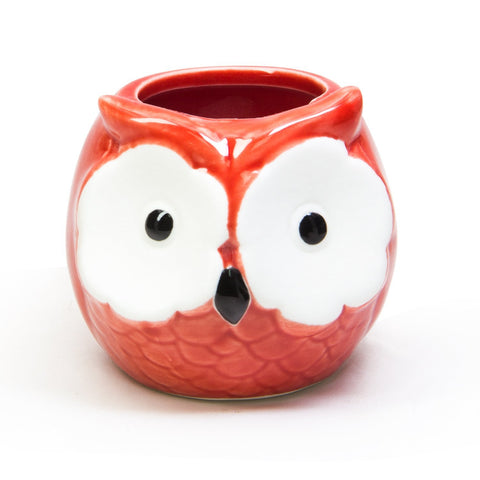 Red Owl Ceramic Pot by Floro-Ideal as Succulent Plant Pot - Gorgeous Owl Design - Includes Drainage Hole - Flower or Bonsai Plant Ceramic Pot for Indoor/Outdoor - Offers All-weather Durability