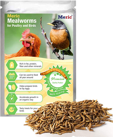 MERIC Mealworm for Reptiles, High Protein Snack for Lizards, Tortoises, Turtles, Snakes, Encourages Variety Feeding and Improved Health, Resealable Zip-Lock Packaging, 3.5 oz.