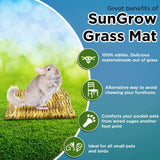SunGrow Seagrass Mat for Chinchilla, 12x12 inches, Handmade Woven Play Bed, Edible Chew Toy, Treat Rodent's Sore Hocks, Place in Cage or on Floor, 30 pcs