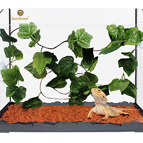 Natural Looking Reptile Plants