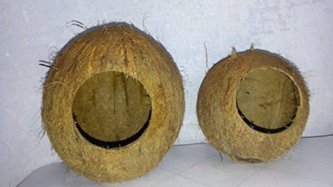Coconut Shell House for Hamsters, Mice, Rats & Gerbils