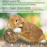Natural Seagrass Edible Chew Mat for Rabbits, Cats, Birds and Other Small Animals