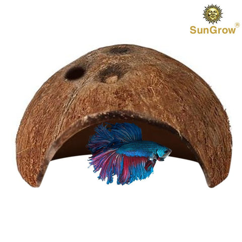 SunGrow 1 Betta Cave & 50 Mini Catappa Almond Leaves Combo, Strengthens Scales and Improves Breeding Chances, Maintains Water Quality, Real Coconut Shell & Raw Leaves, Miracle Leaves That Lowers pH