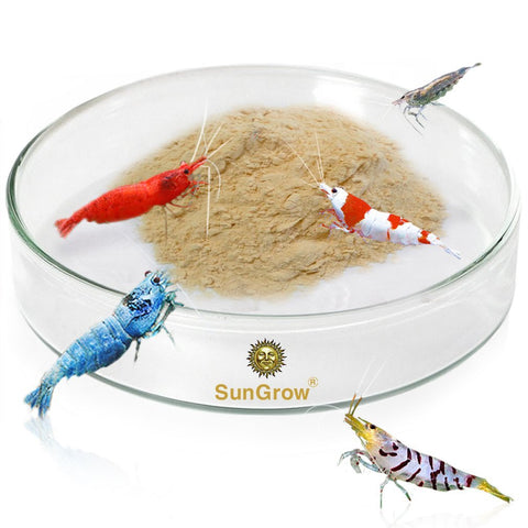 Tough Borosilicate Glass Shrimp Feed Dish