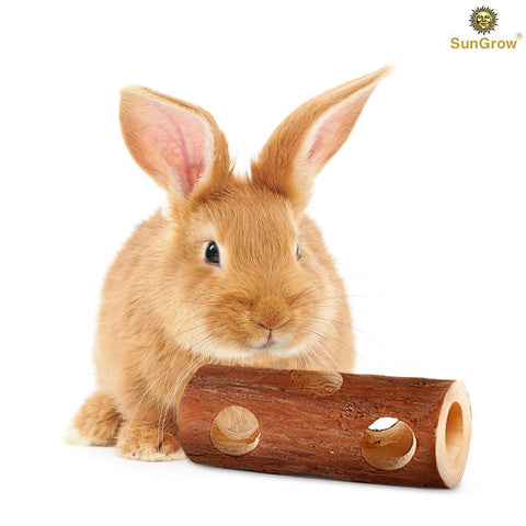 Fresh Pine Chew Log for Rabbits by SunGrow