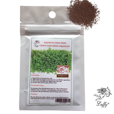 2oz. pack Aquarium Temple Plant Seeds - Tropical Hygrophila Plant