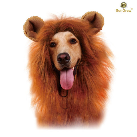 SunGrow Lion Mane Costume with Ears for Dogs