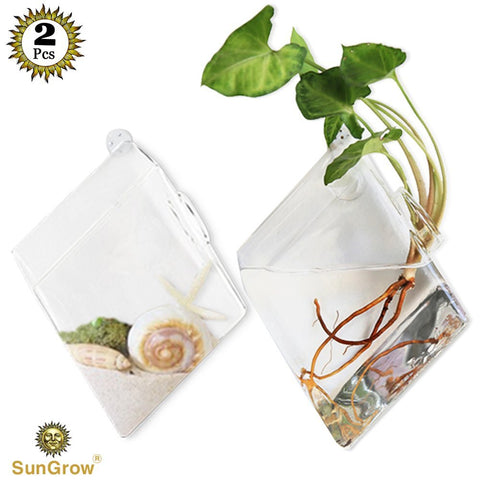 2 Wall Hanging Plant Terrarium Glass - Elegant Diamond Shaped Vases