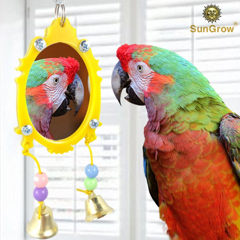 Fancy Bird Toy Mirror with Bells