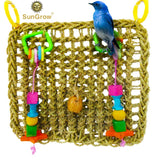 Bird Foraging Wall Toy with Hanging hook