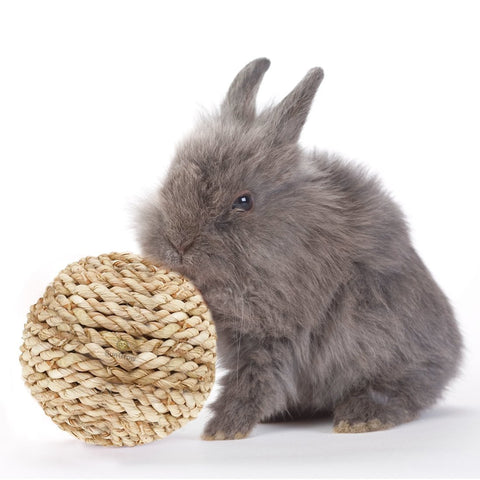 Natural Grass Rabbit Rope Ball