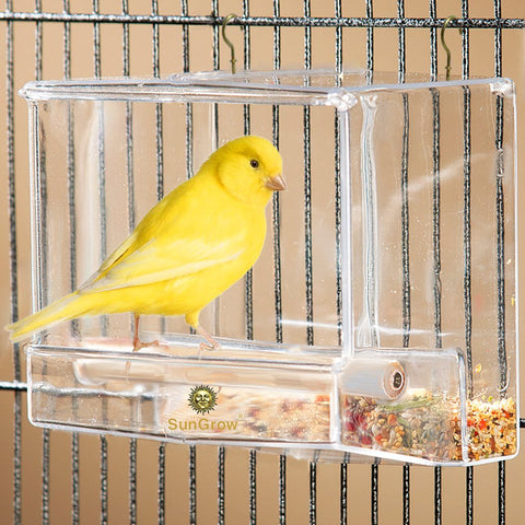 Acrylic Glass Bird Feeder Set