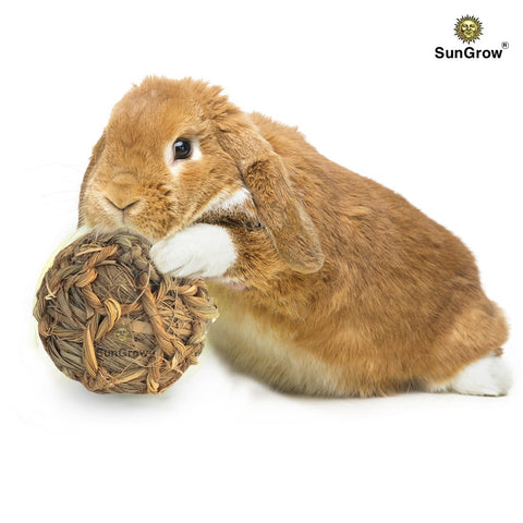 Natural Seagrass Ball for Rabbits, Cats, Hamsters, Gerbils & Birds