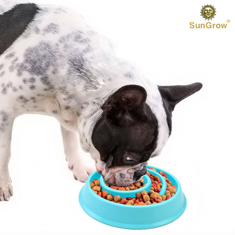 Slow Dog Feed Bowl by SunGrow