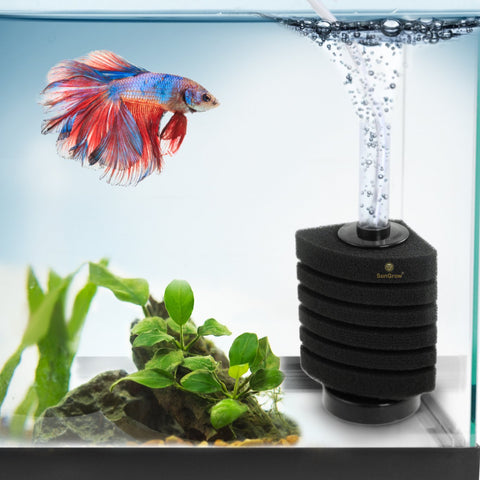 6-Layer Betta Corner Filter