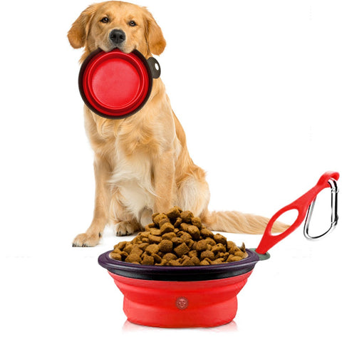 Collapsible, Portable Pet Travel Bowl