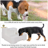 Automatic Drinking Water Fountain for Pets