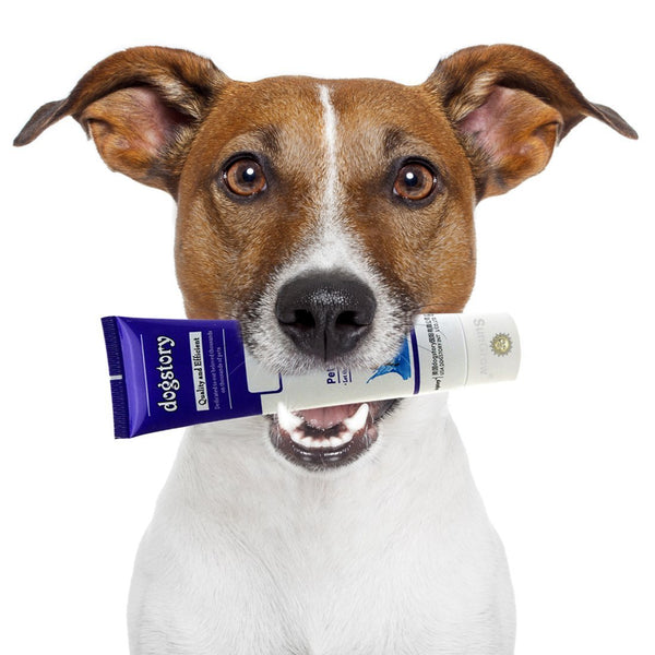 Beef-flavored Dog Toothpaste: Make Tooth Brushing a Joyful Experience, Reduce Plaque & Dog Approved, 1 Pack