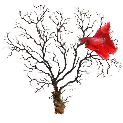 Natural Aquarium Sea Fan by SunGrow